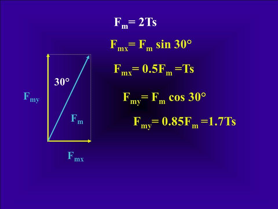 5/6 Ts· l G = F m · l m F m = 5/6 Ts · l G · l m -1 FmFm FGFG F m = 2.0 Ts Rydell (1966)