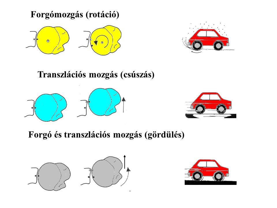 GLENOHUMERALIS IZÜLET LEGTÖBB SZABADSÁGFOKKAL RENDELKEZŐ IZÜLET DOF = (3+3)N – C, C= 0