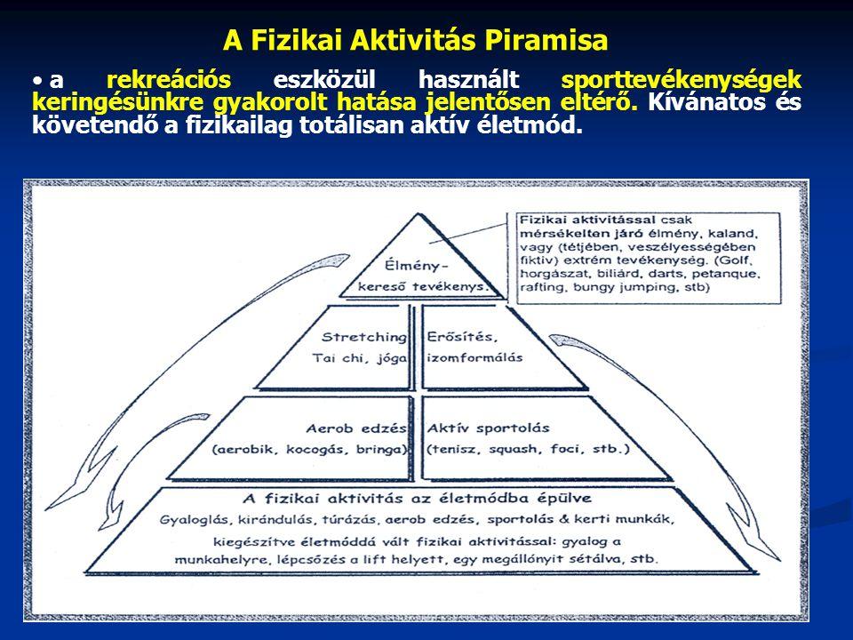 A Fizikai Aktivitás Piramisa a rekreációs eszközül használt sporttevékenységek keringésünkre gyakorolt hatása jelentősen eltérő.