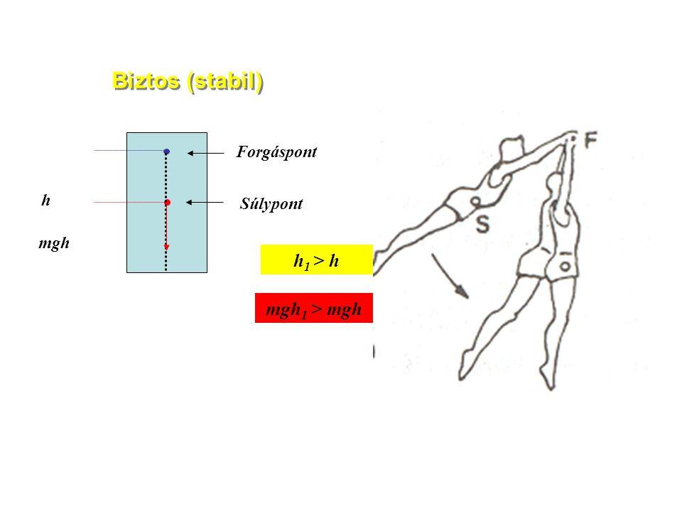 Súlypont Nyomásközéppont A testlengés mérése