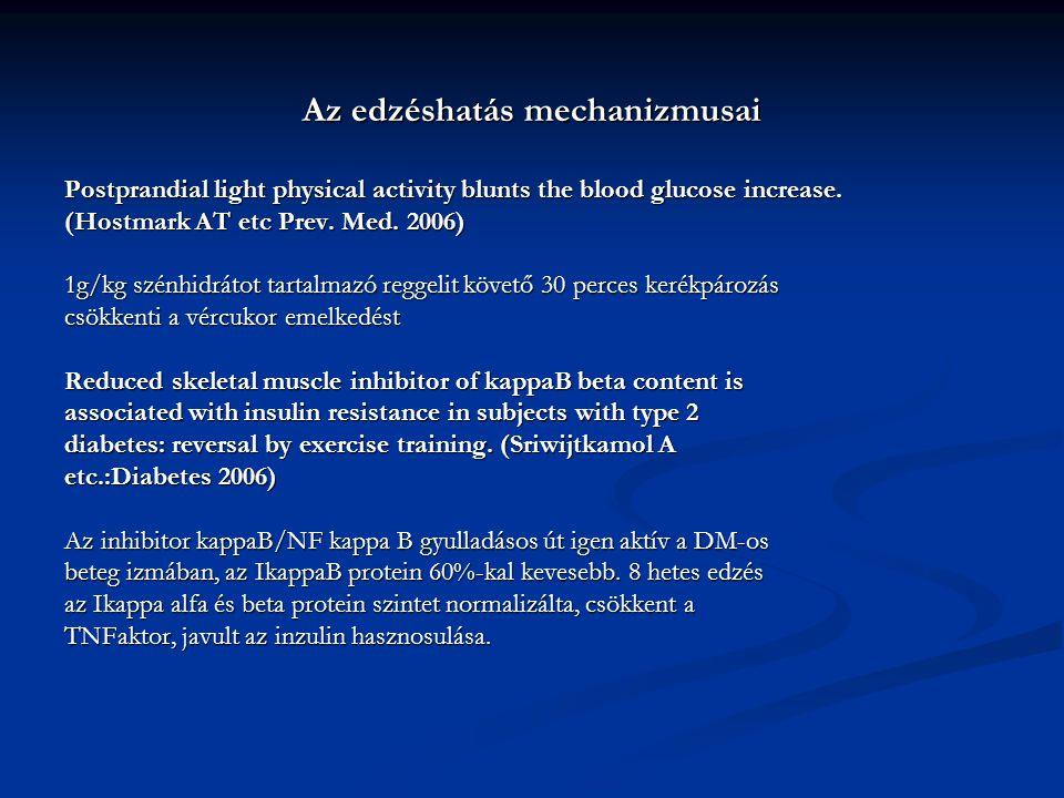 Az edzéshatás mechanizmusai Postprandial light physical activity blunts the blood glucose increase. (Hostmark AT etc Prev. Med. 2006) 1g/kg szénhidrát