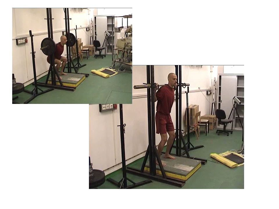 Néhány erőfejlesztő gyakorlat biomechanikája Biomechanics of some strengthening drills 2010. 10. 25.
