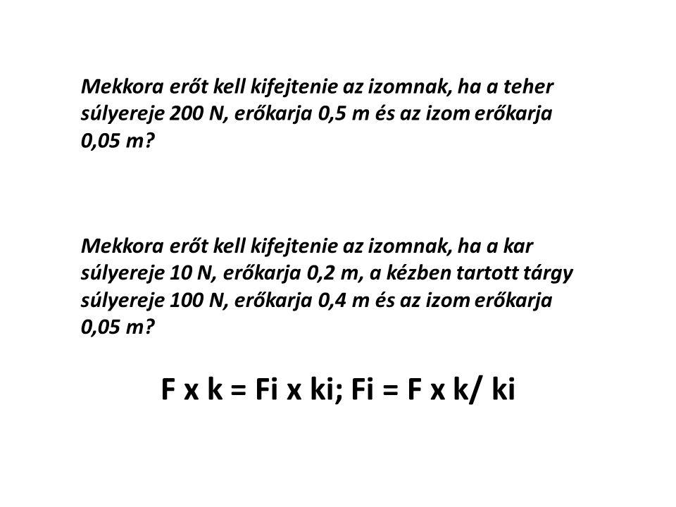 Mekkora erőt kell kifejtenie az izomnak, ha a teher súlyereje 200 N, erőkarja 0,5 m és az izom erőkarja 0,05 m.