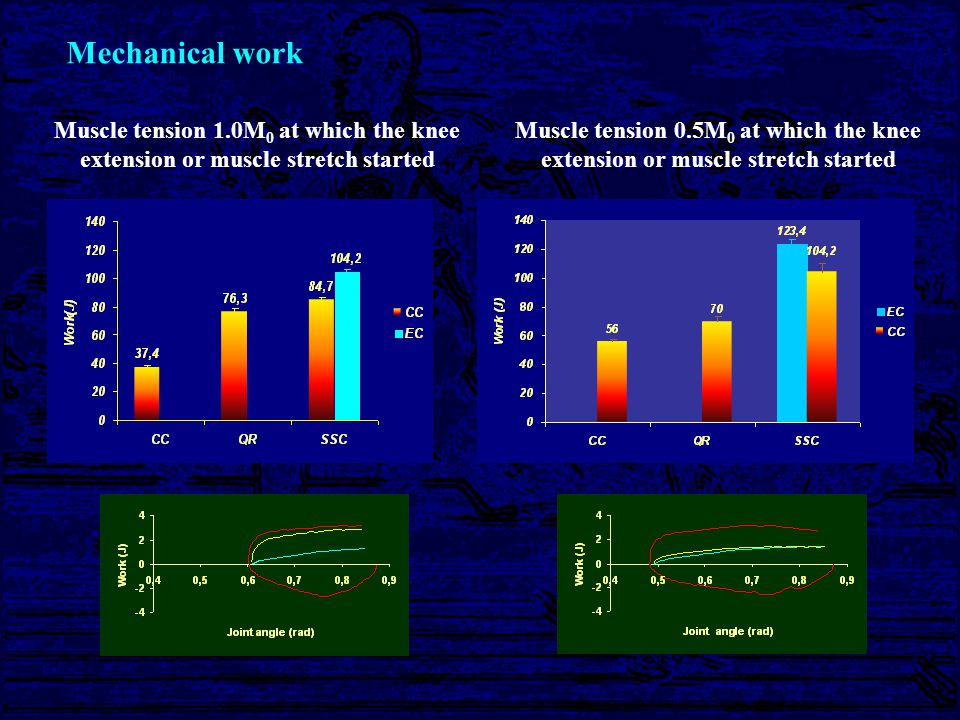Benefit of muscle stretch Contraction time 1.0Mo 0.5Mo