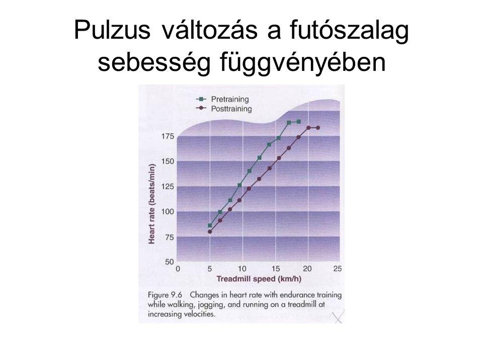 Pulzus változás a futószalag sebesség függvényében