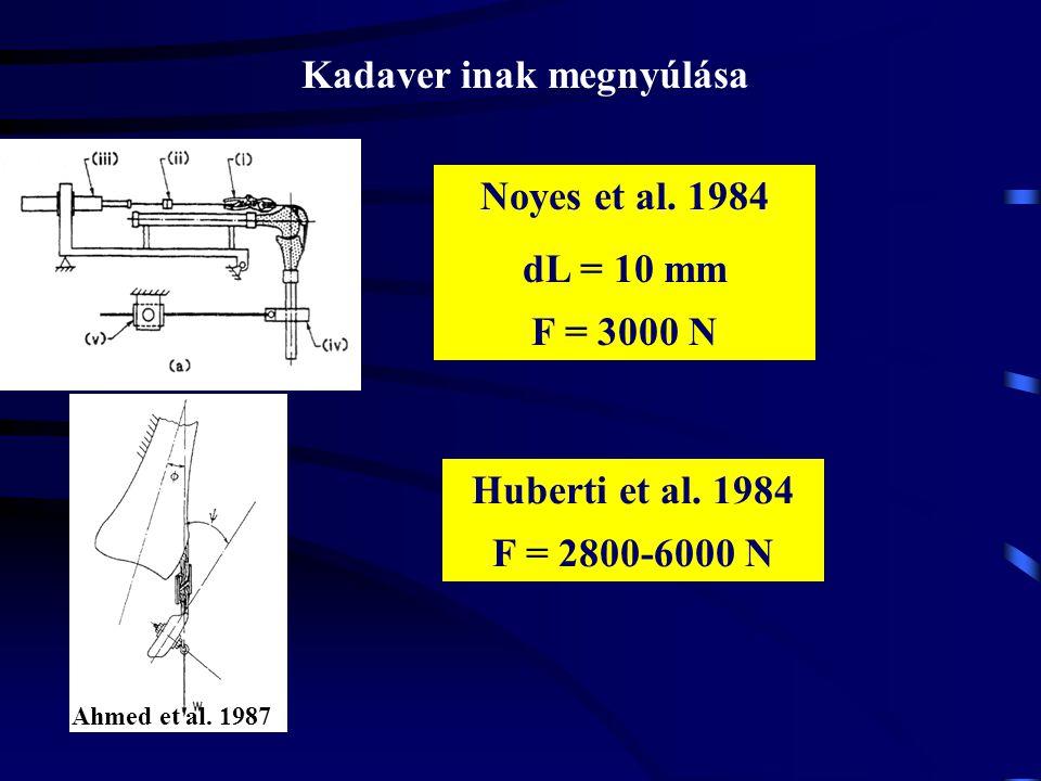 Ahmed et al. 1987 A patella ín hossz-feszülés jellemzőinek mérése kadaver modellen Noyes et al. 1984 PT ACL