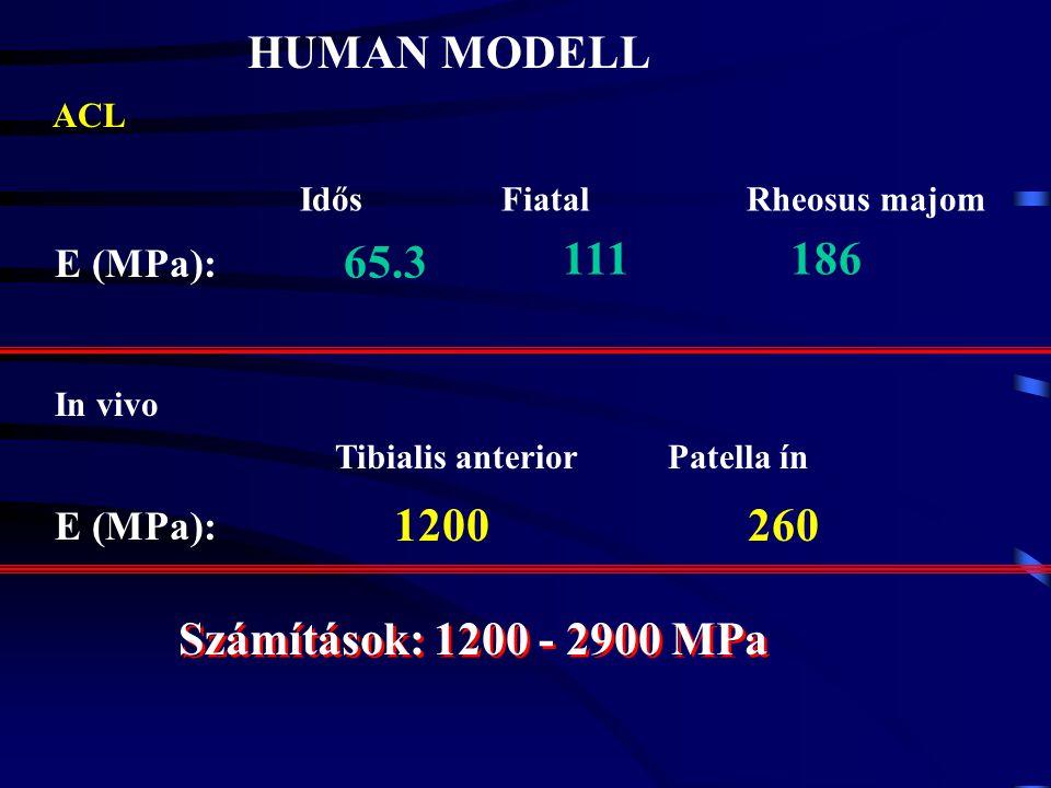 ELASTIKUS (YOUNG) MODULUS E = Δσ Δε -1 Δσ Δε