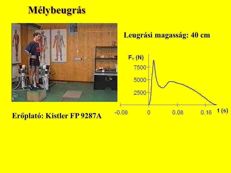 AZ ÍNAK BIZTONSÁGI FAKTORA Maximális feszülés (erő) A fizikai aktivatás alatt meghatározott maximális erő 2.0 – 5.0