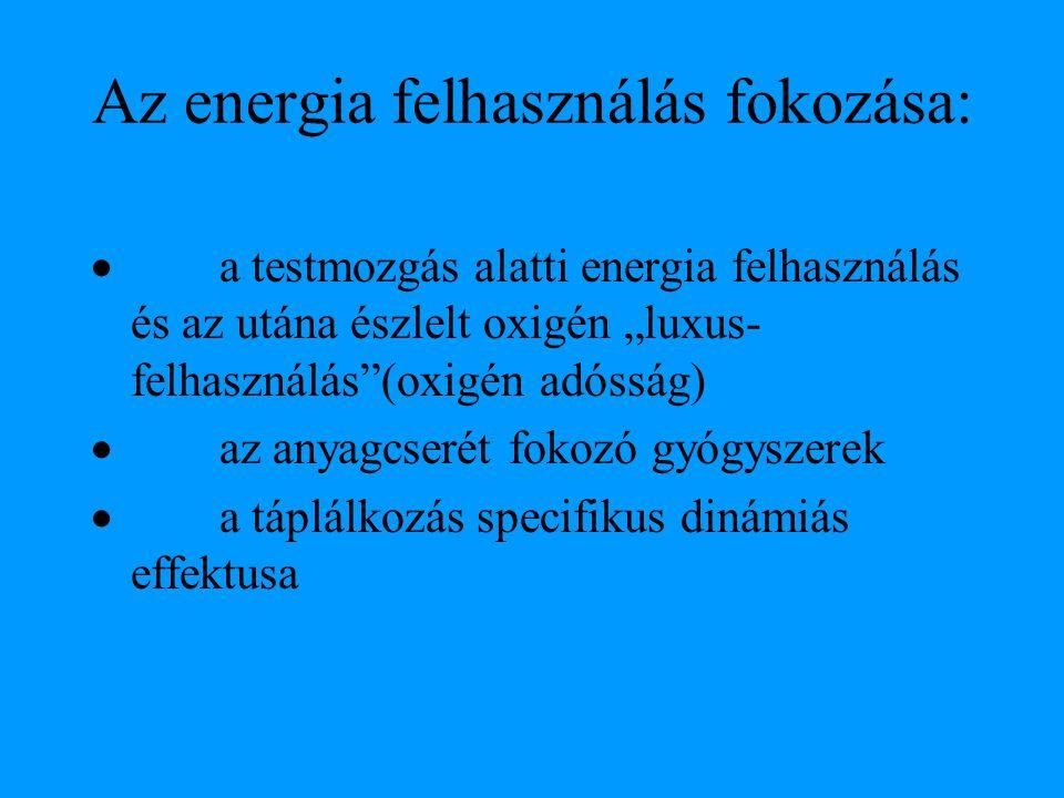 """Az energia felhasználás fokozása:  a testmozgás alatti energia felhasználás és az utána észlelt oxigén """"luxus- felhasználás""""(oxigén adósság)  az any"""