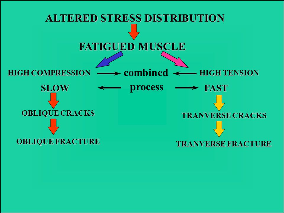 STRENUOUS EXERCISE FATIGUED MUSCLE LOSS OF SHOCK ABSORBING CAPACITY ALTERED GAIT ABNORMAL LOADING