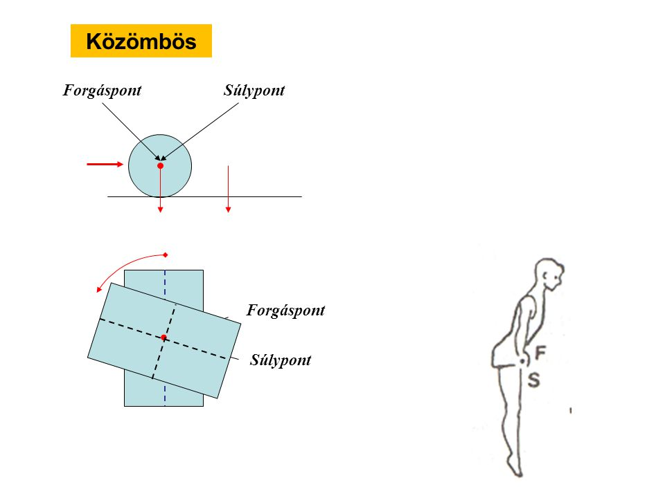 Közömbös Behatárolt bizonytalan Bizonytalan - Instabil (labilis) Egyensúlyi helyzetek Biztos - Stabil (labilis)