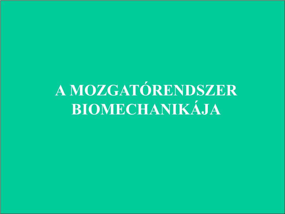 A MOZGATÓRENDSZER BIOMECHANIKÁJA