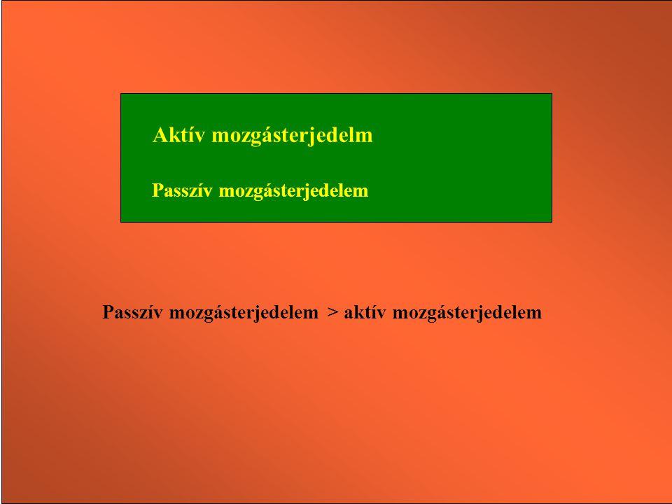 MOZGÁSTERJEDELEM (ROM) ROM ROM =  max -  min A mozgásterjedelem azt a legnagyobb izületi szögelfordulást jelenti egy ízületi tengely körül, amely an