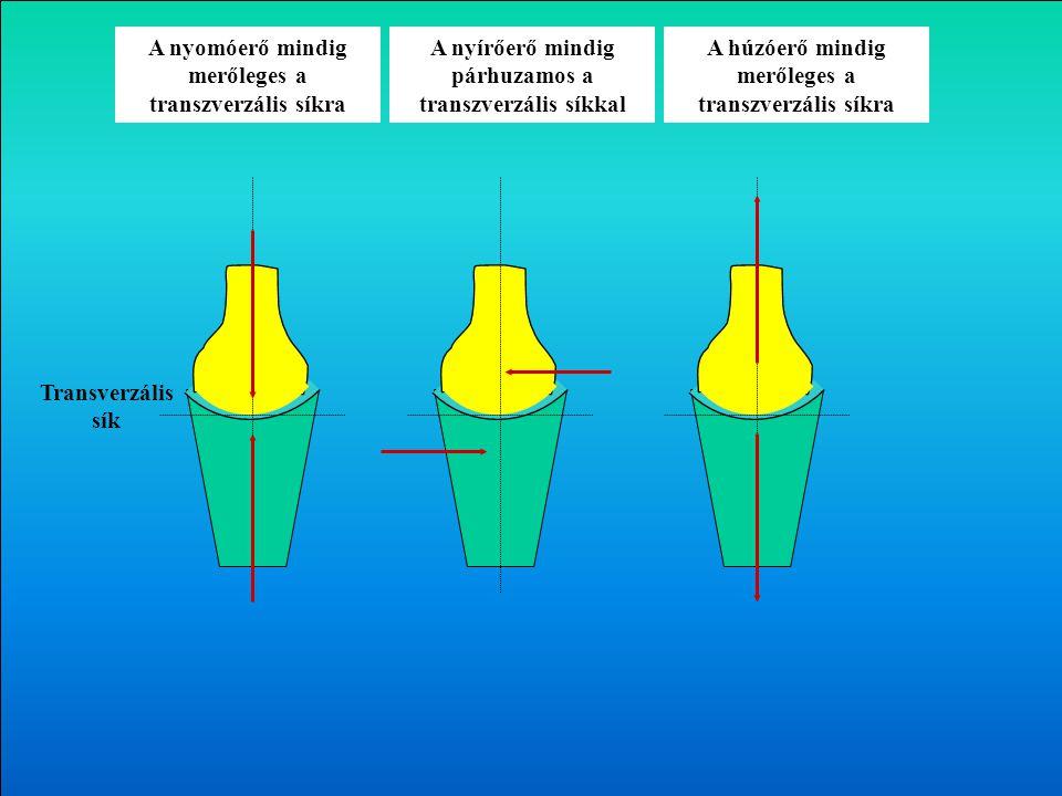 1. Nyomó (kompressziós) 2. Húzó (tenzilis) 3. Nyíró 4. Reakció