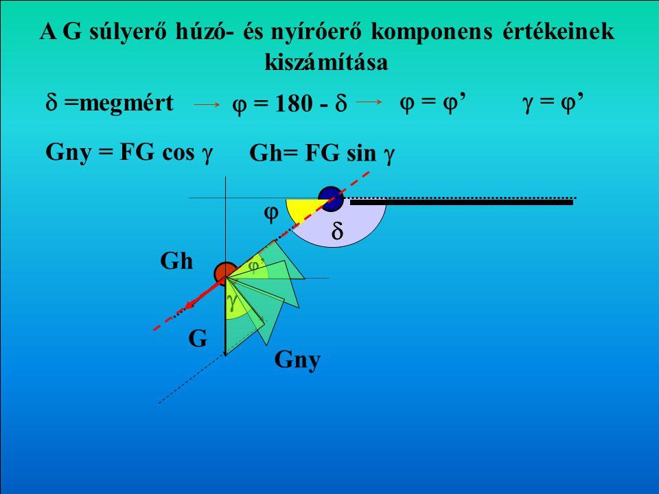    =mért  = 180 -  A végtagok súlyerejének hatása az ízületekre G Gny Gh Transzverzális sík 