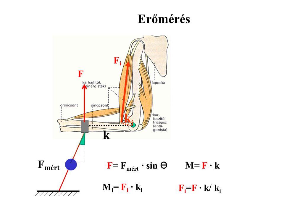 Erőmérés M = F mért k Fi F mért ki F mért k = Fi ki Fi = F mért k / ki k Mi = Fi ki
