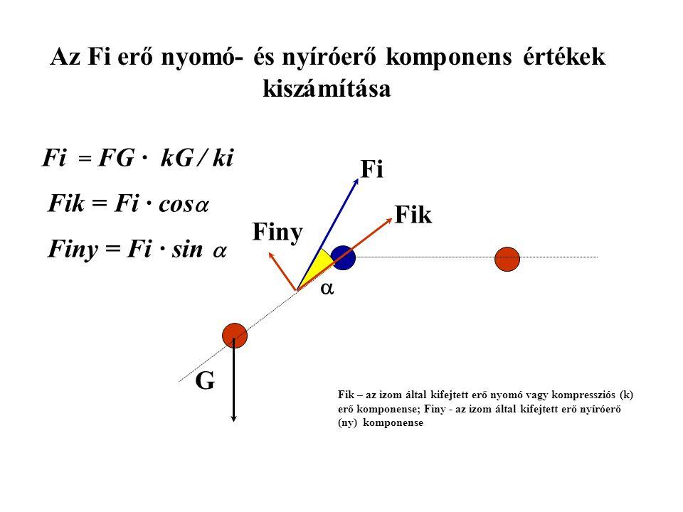 Az izomerő (Fm) kiszámítása G kGkG FiFi ki FG · lG = Fi · ki Fi = G · kG / ki