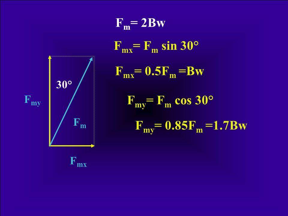 5/6 Bw · l G = F m · l m F m = 5/6 Bw · l G · l m -1 FmFm FGFG F m = 2.0 Bw