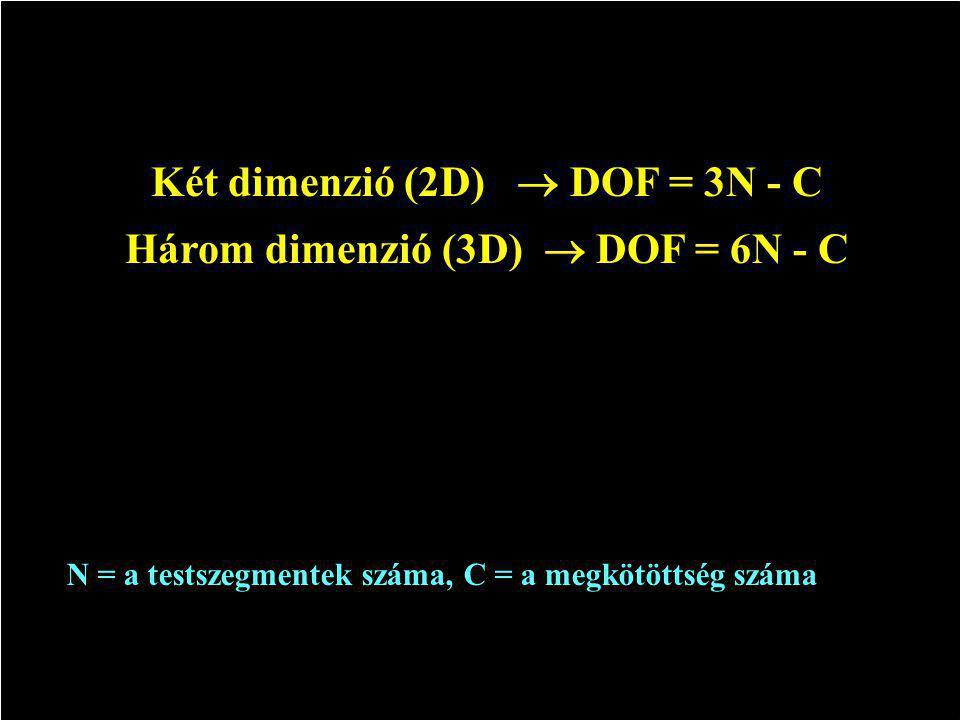 Két dimenzió (2D)  DOF = 3N - C Három dimenzió (3D)  DOF = 6N - C N = a testszegmentek száma, C = a megkötöttség száma