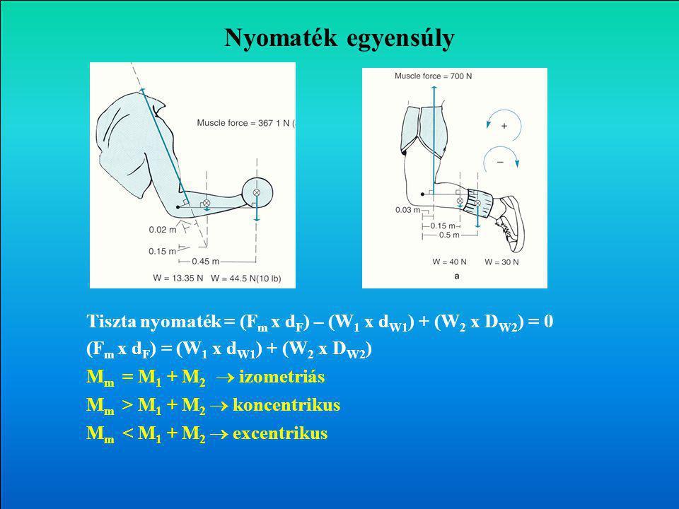 Nyomaték egyensúly Tiszta nyomaték = (F m x d F ) – (W 1 x d W1 ) + (W 2 x D W2 ) = 0 (F m x d F ) = (W 1 x d W1 ) + (W 2 x D W2 ) M m = M 1 + M 2  izometriás M m > M 1 + M 2  koncentrikus M m < M 1 + M 2  excentrikus