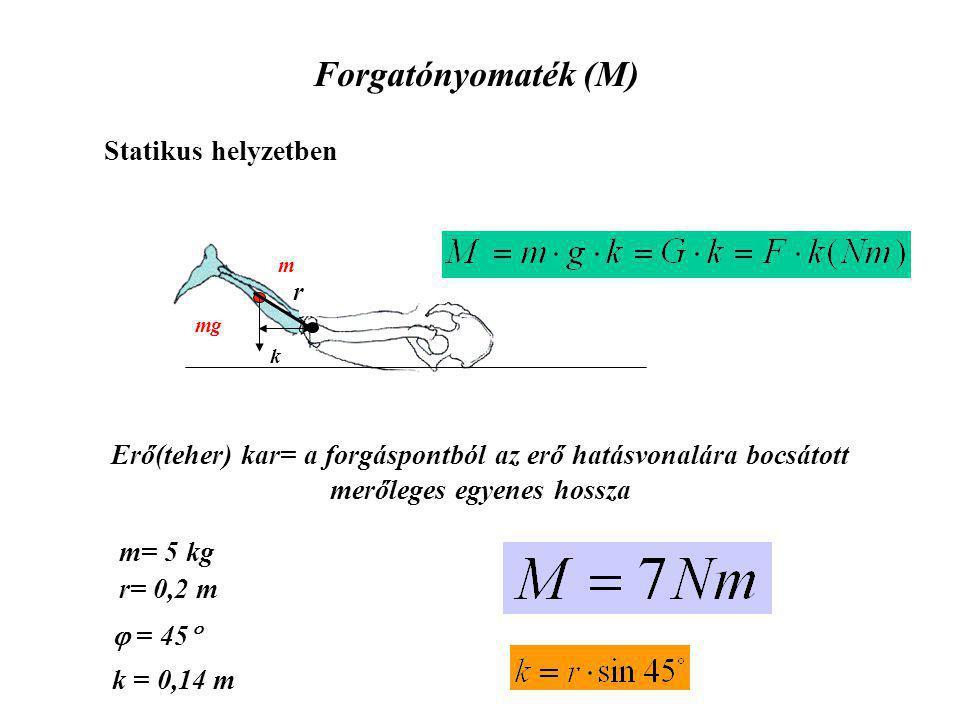 Forgatónyomaték (M) m mg k Erő(teher) kar= a forgáspontból az erő hatásvonalára bocsátott merőleges egyenes hossza Statikus helyzetben m= 5 kg r= 0,2 m k = 0,14 m  = 45  r