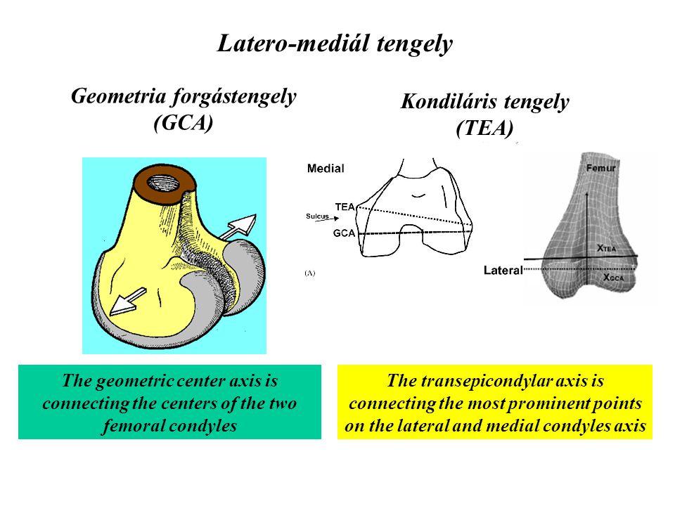 Forgástengelyek Transverzális Lateromediális – hajlítás-feszítés (x-x') Husszúsági – forgás (y-y') Anterior-posterior – közelítés-távolítás (z-z')