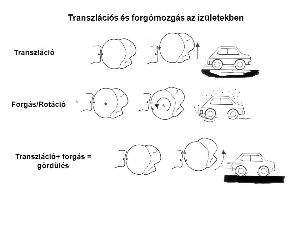 A haladó és forgó mozgás kombinációja kiterjedt test esetén A levegőben a forgás a tömegközéppont (súlypont) körül valósul meg