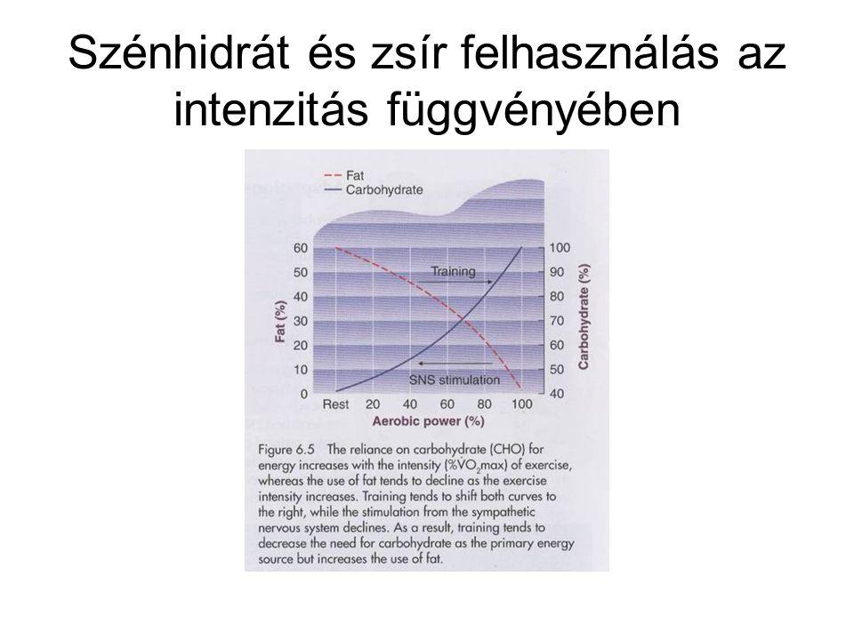 Szénhidrát és zsír felhasználás az intenzitás függvényében