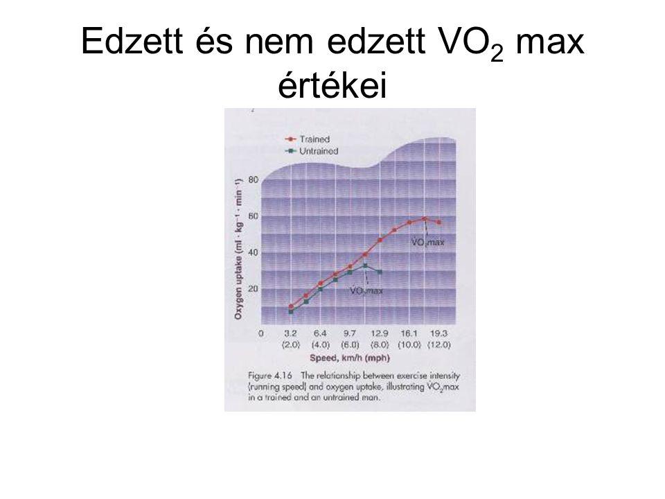 Edzett és nem edzett VO 2 max értékei