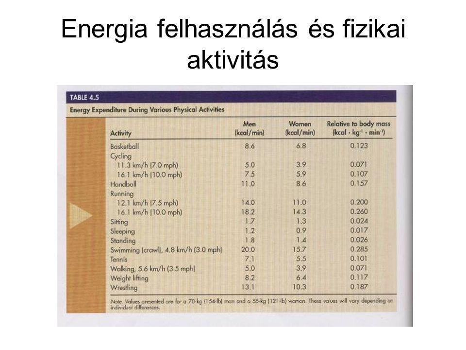 Energia felhasználás és fizikai aktivitás