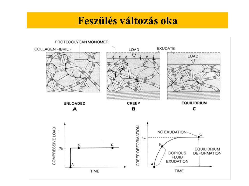 1. Kétfokozatú feszülés változás Az idő, amely szükséges a feszülési egyensúly létrejöttéhez ellentétesen változik a szövet vastagságának négyzetével.