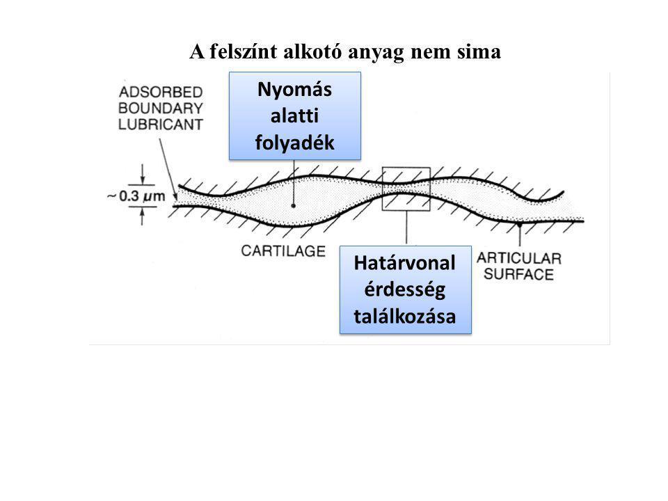 Boosted lubrication Az eltérő vastagságú folyadékrétegek megrekednek, a nyomás növekedése közben