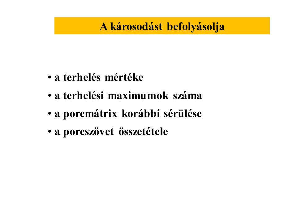 Ízületi porc sérülése 1.Közvetlen sérülés Ízületi felszínek közvetlen érintkezése 2.