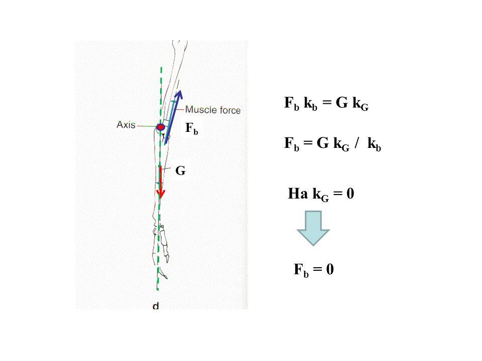 Az izomerő kiszámítása M = F k F FbFb F k b F k F = F b k b F b = F k F / k b kFkF M b = F b k b