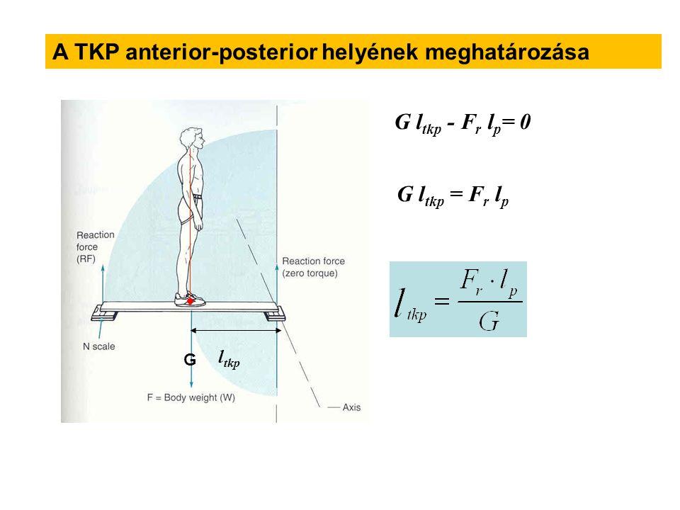 lplp G FrFr  M alátámasztási pont = 0 G l tkp - F r l p = 0 l tkp Ha G palló =0 G l tkp = F r l p