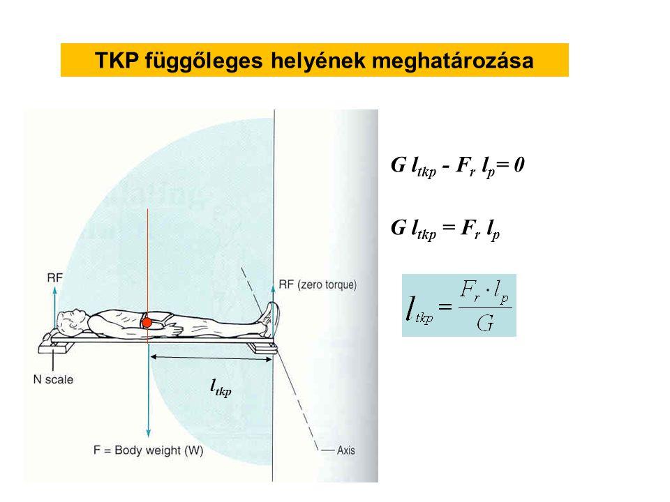 A TKP anterior-posterior helyének meghatározása G l tkp G l tkp - F r l p = 0 G l tkp = F r l p