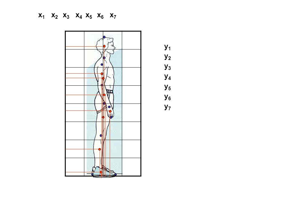 P1P1 P2P2 P3P3 P4P4 P5P5 P6P6 P7P7 P8P8 (P 1 – P 2 )  0.45 (P 2 – P 5 )  0.61 (P 3 – P 4 )  0.43 (P 4 – P 6 )  0.43 (P 5 – P 7 )  0.43 (P 7 – P 8 )  0.43 A részsúlypontok helyének meghatározása