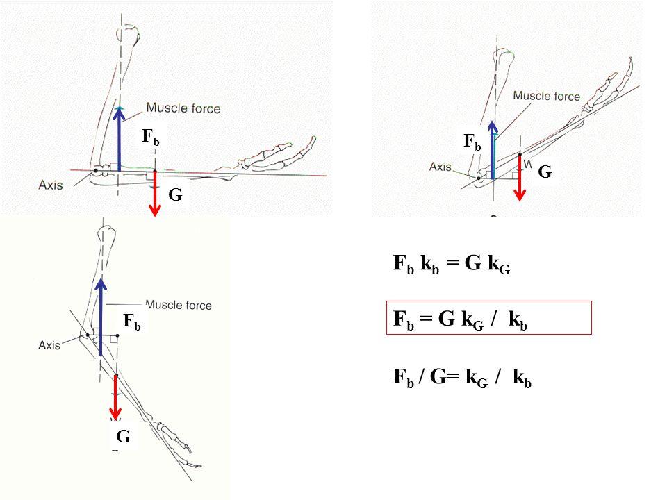 TKP kockában A TKP-ban a testet felfüggesztve bármely helyzetben egyensúlyban marad A pont amire a gravitációs erő hat, hatásvonala átmegy rajta Nem homogén anyageloszlás