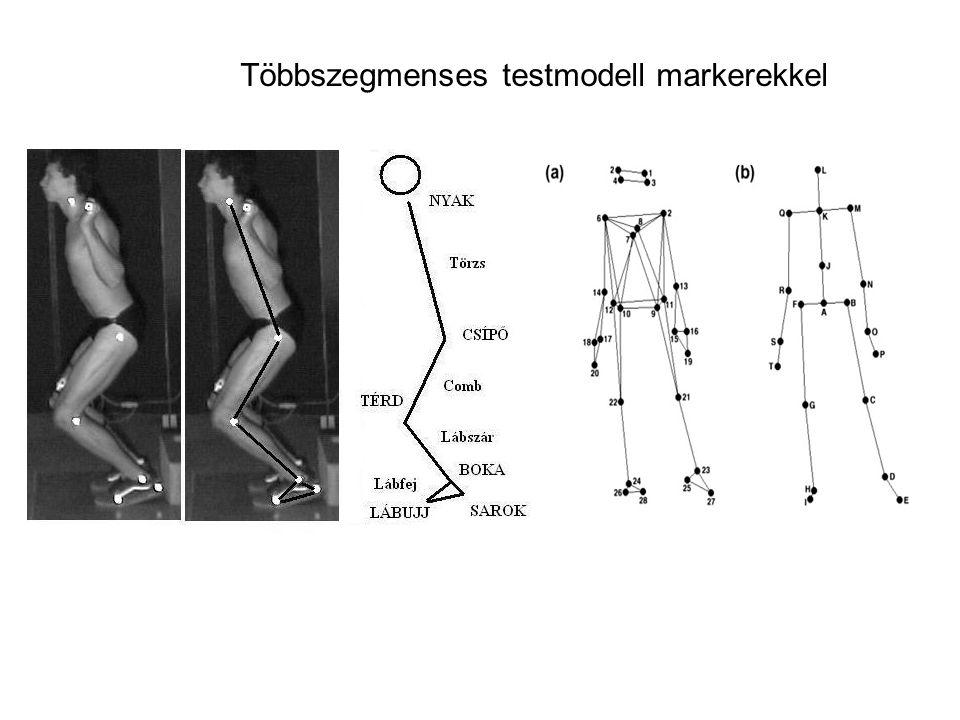 Markerek elhelyezése a megfelelő anatómiai pontokra