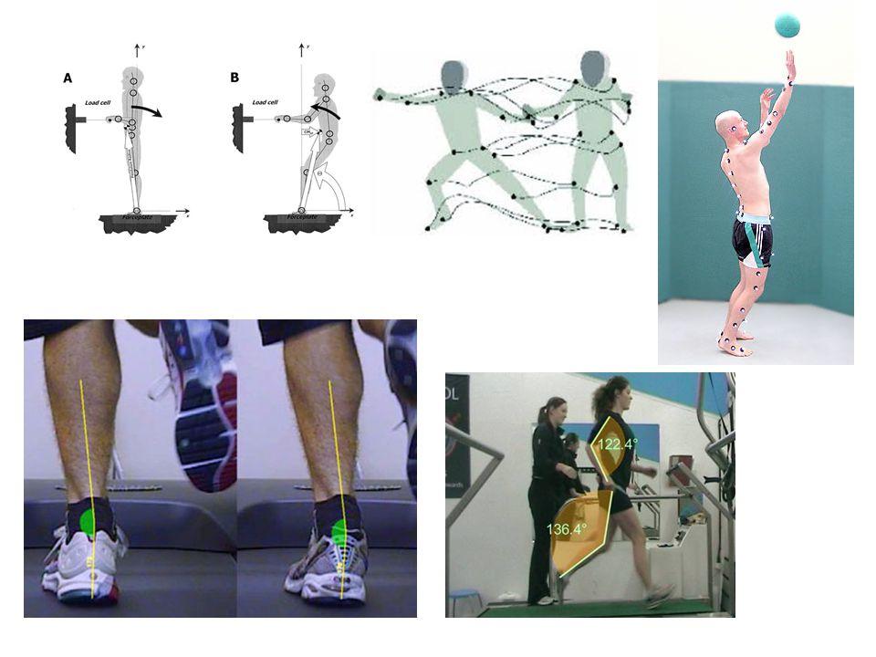 Többszegmenses testmodell markerekkel