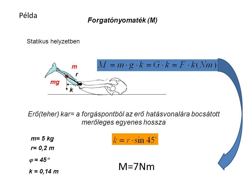 Forgatónyomaték M=Fk F k 90˚ m 1 =50kg k 1 =3m m 2 =150kg k 2 =1m M 1 =m 1 gk1M 2 =m 2 gk 2 1471.5Nm = = Egyensúly esetén a forgatónyomatékok megegyeznek!