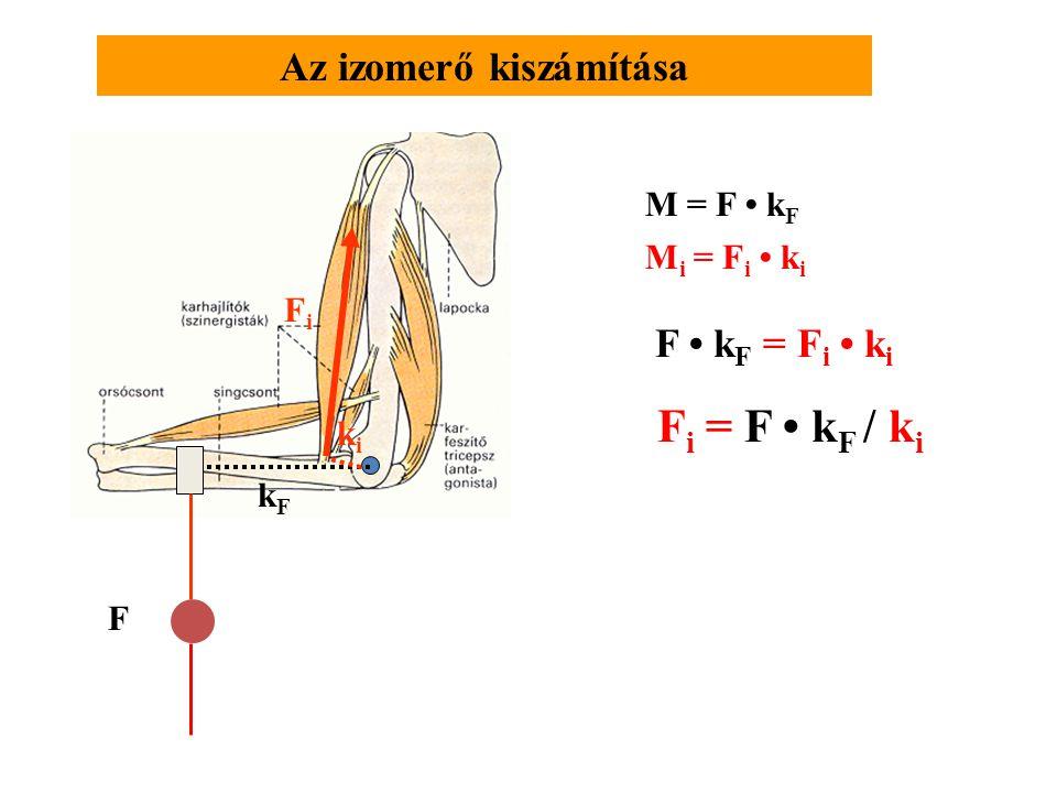 Forgatónyomaték (M) m mg k Erő(teher) kar= a forgáspontból az erő hatásvonalára bocsátott merőleges egyenes hossza Statikus helyzetben m= 5 kg r= 0,2 m k = 0,14 m  = 45  r M=7Nm Példa