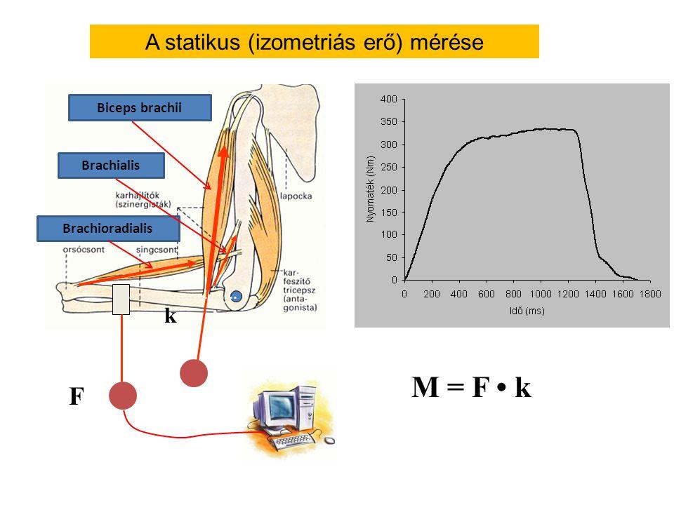 l m m= 5 kg l= 0,5 m  t= 0,05 s  = 45  = 0,785 rad β = 314 1/s 2 = 314 rad/s 2 Forgatónyomaték kiszámítása Dinamikus körülmények között vízszintes