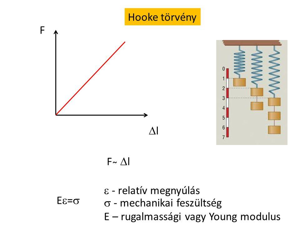 Ízületi erők meghatározása 1.Grafikus 2. Számítás 3.