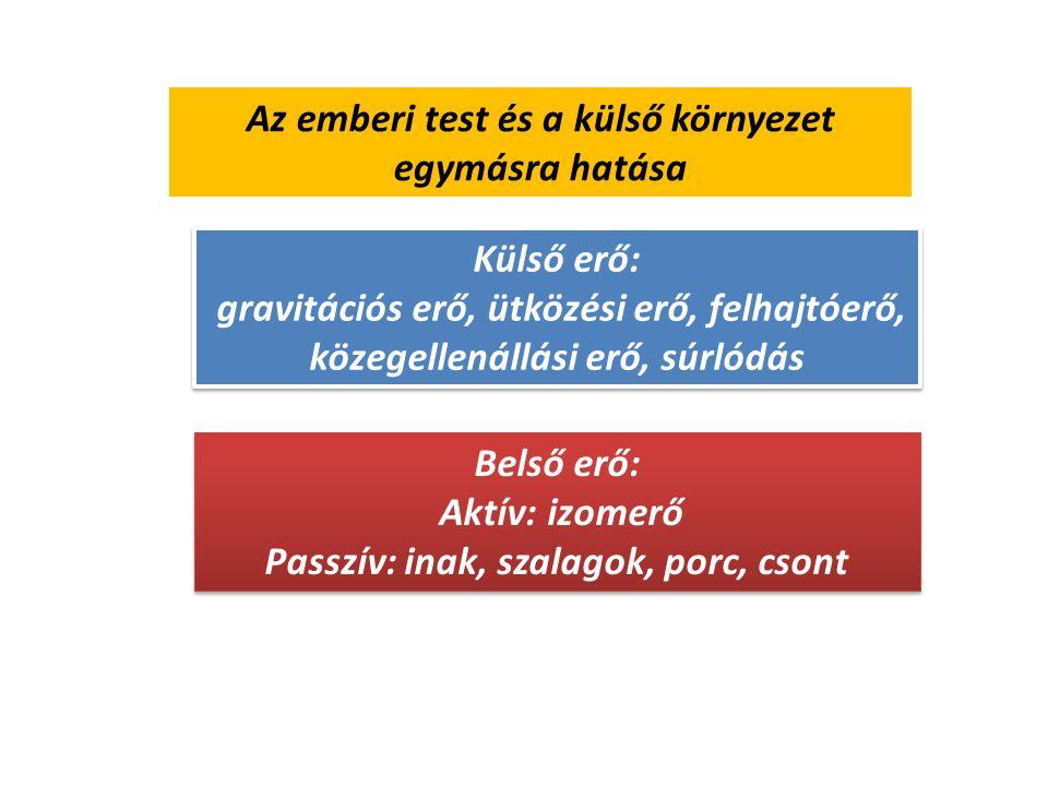 A mozgatórendszerre ható erők 1.Húzó 2.Nyomó 3.Nyíró 4.Csavaró (torziós) 5.Hajlító