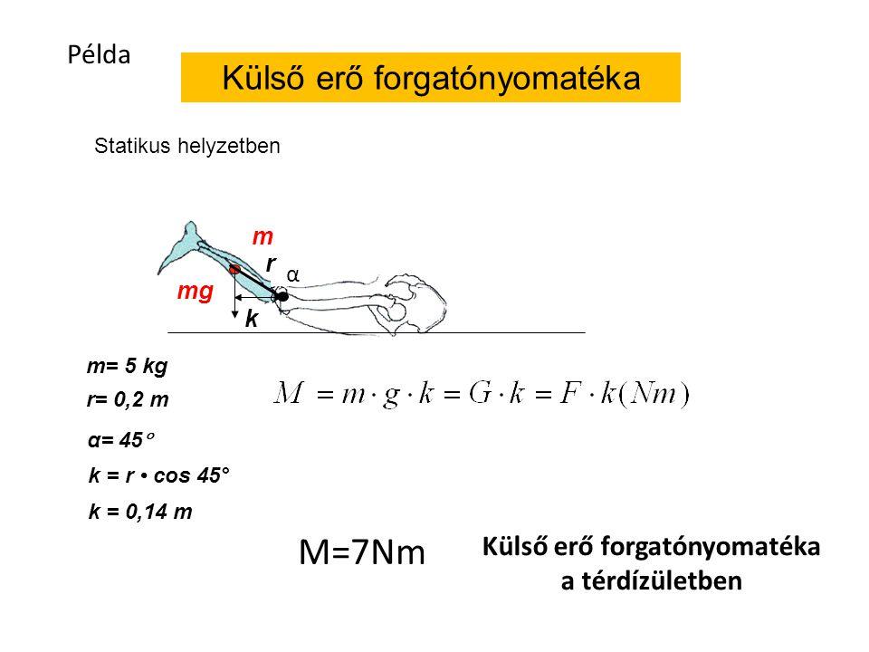 Külső erő forgatónyomatéka m mg k Statikus helyzetben m= 5 kg r= 0,2 m k = 0,14 m α= 45  r M=7Nm Példa α Külső erő forgatónyomatéka a térdízületben k = r cos 45°