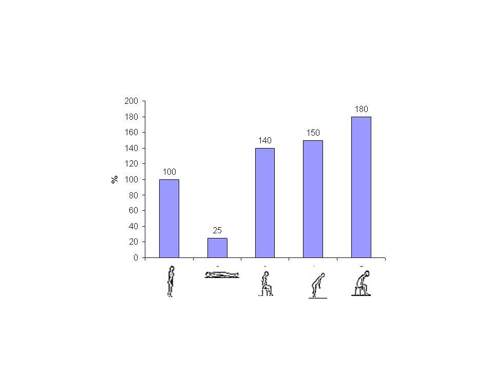 Erőhatások a gerincoszlopon