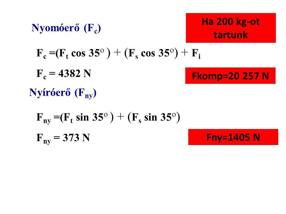 F s F t F i k s k t k i ki ki = 0.05 m Fs Fs = 450 N ks ks = 0.25 m Ft Ft = 200 N kt kt = 0.4 m F i = 3850 N