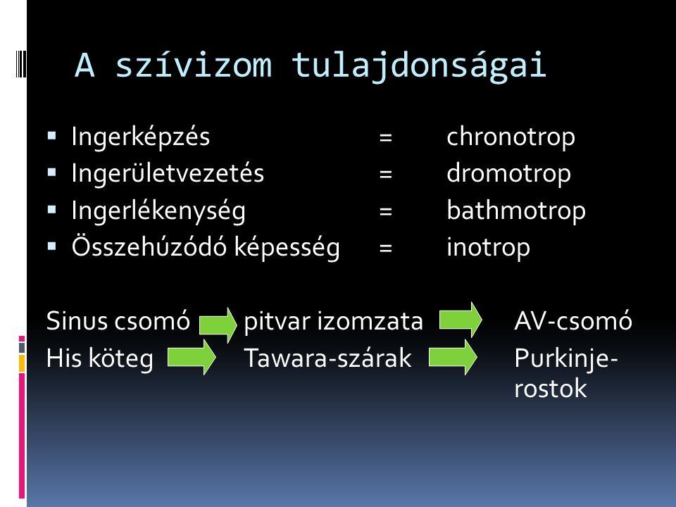 A szívizom tulajdonságai  Ingerképzés=chronotrop  Ingerületvezetés=dromotrop  Ingerlékenység=bathmotrop  Összehúzódó képesség=inotrop Sinus csomóp