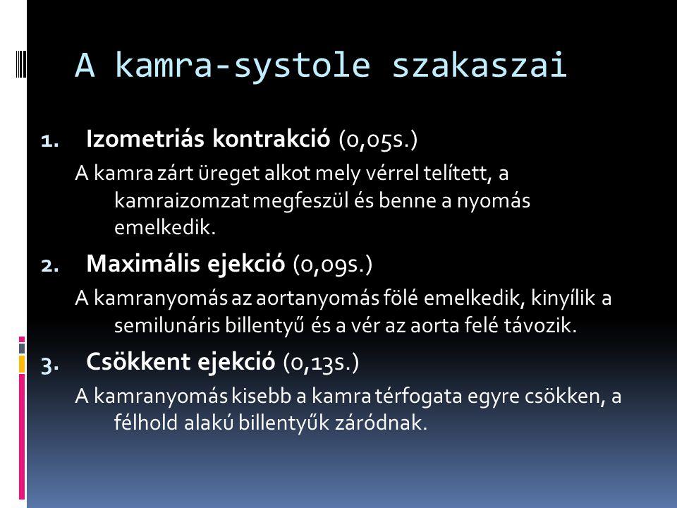 A kamra-systole szakaszai 1. Izometriás kontrakció (0,05s.) A kamra zárt üreget alkot mely vérrel telített, a kamraizomzat megfeszül és benne a nyomás